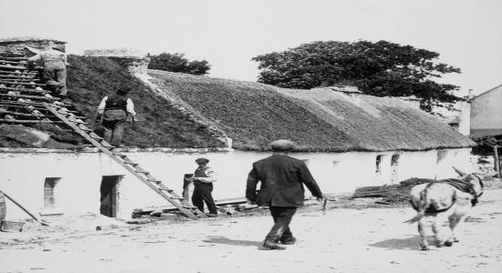 Caption: Thatching. OK T.H. Mason Lantern. SF501-550. ©National Museum of Ireland